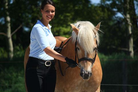 Arbeit an der Hand mit einem Pferd
