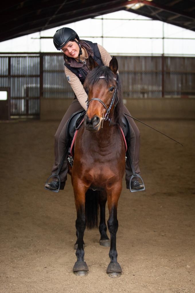 Loben des Pferdes nach einer guten Reiteinheit