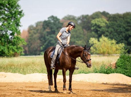 Reiterin lobt ihr stehendes Pferd.