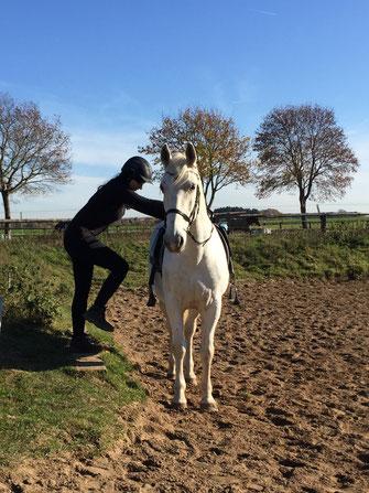 Reiter steigt aufs Pferd
