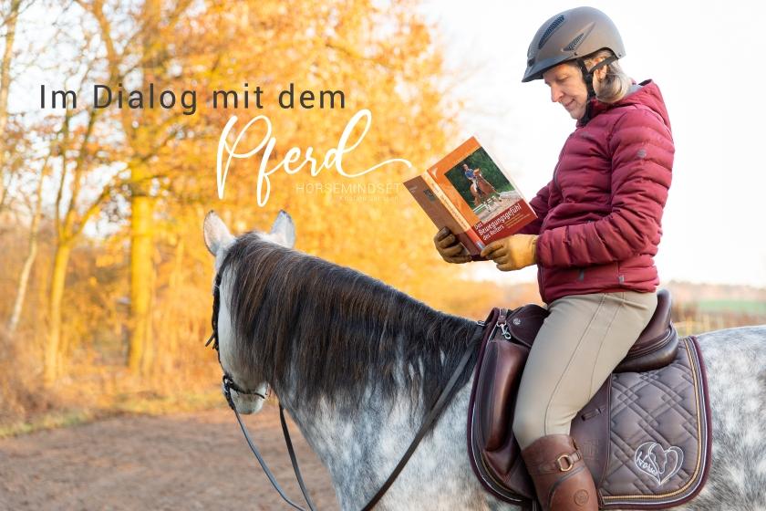 Durch den richtigen Reitersitz im Dialog mit dem Pferd reiten.