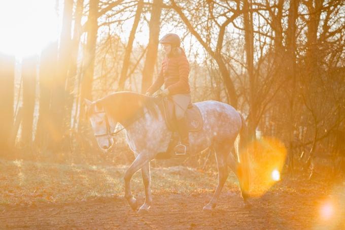Reiten in der winterlichen Morgensonne