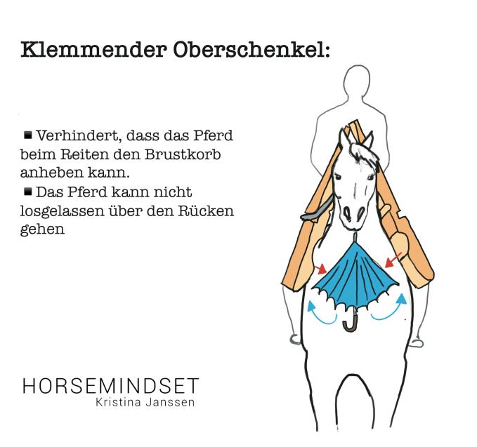 Einfluss des klemmenden Schenkels vom Reiter auf das Pferd.